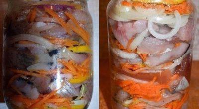Нежная, сладкая, сочная и очень вкусная селёдка по-голландски: рецепт в банке