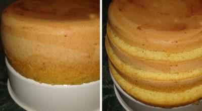 Самый простой рецепт бисквита. Такого высоченного бисквита у меня ещё не получалось