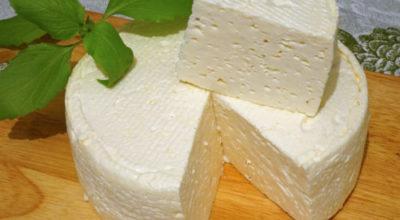 Домашний французский сыр: бюджетно, вкусно и просто