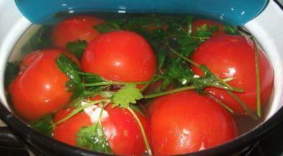 Квашенные помидорчики в кастрюле – таких вы еще не пробовали