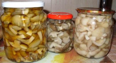 Самый вкусный рецепт маринования грибов