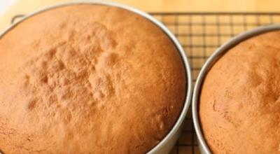 Медовик для самых ленивых сладкоежек: даже не нужно раскатывать тесто